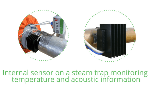 DCO's internal sensor on a steam trap monitoring temperature and acoustic information